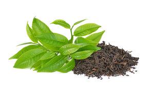 2020-01-25 Workshop - Verkostung - Schwarzer Tee
